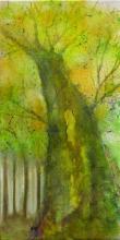 Arbre 2 - Huile sur toile - 30x60 cm - 2008