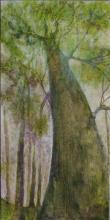 Lianes 2 - Huile sur toile - 50x100 cm - 2009