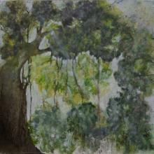 Lianes - Huile sur toile - 50x50 cm - 2008